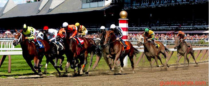 ม้าแข่ง